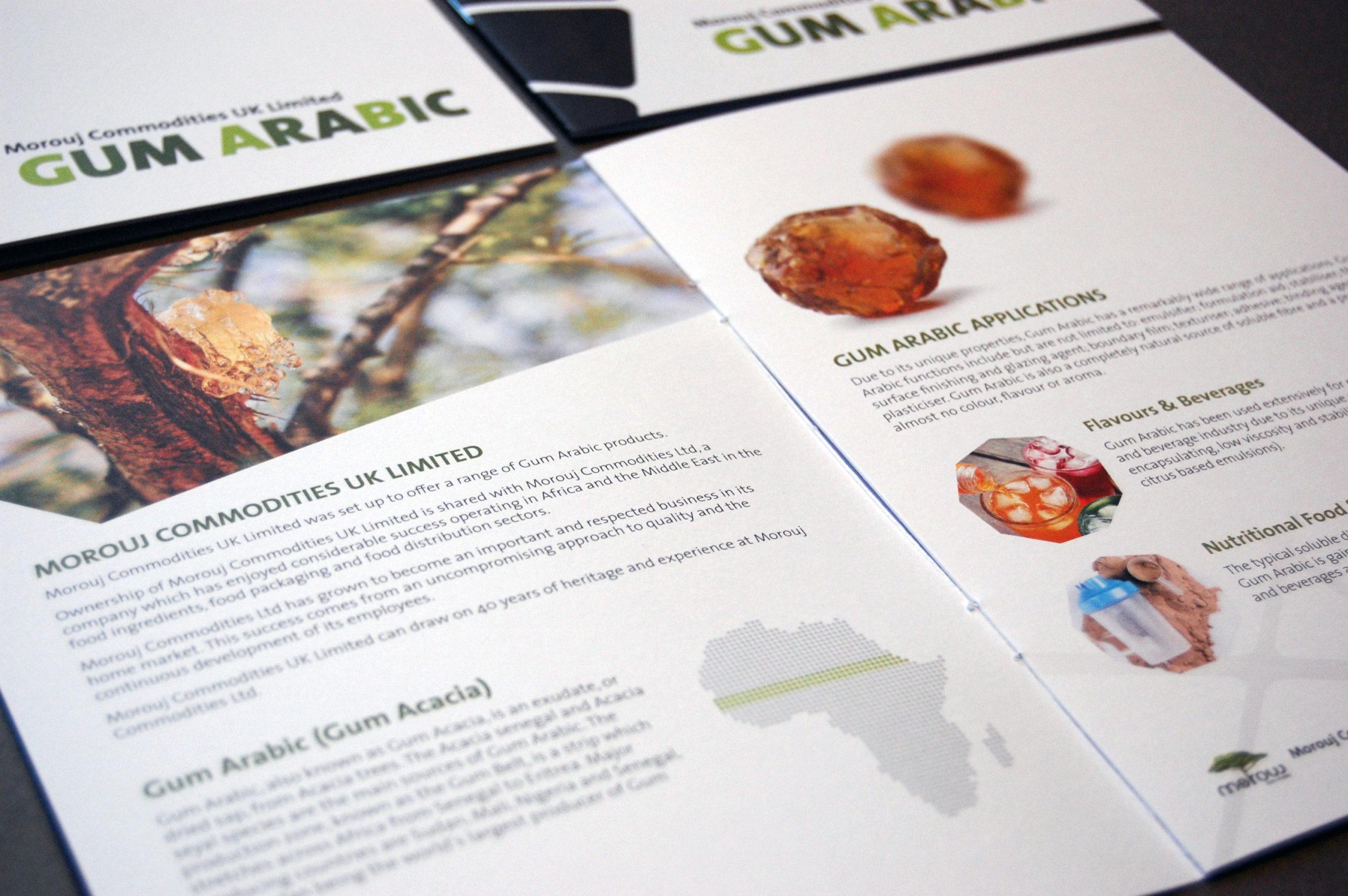 Mourouj brochure spread